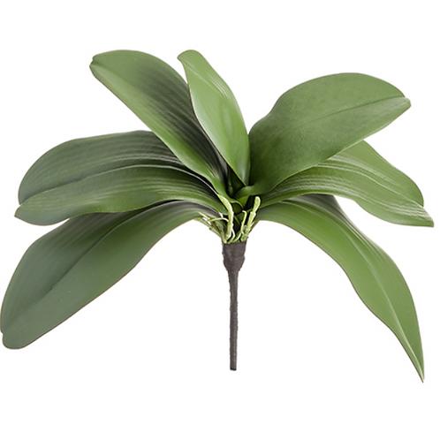 "12"" Soft Phalaenopsis Orchid Leaf Plant x 7"