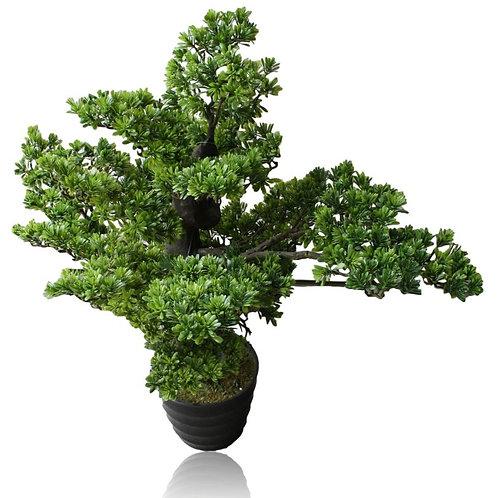 "Artificial Podocarpus Bonsai in pot - 32"" Tall"
