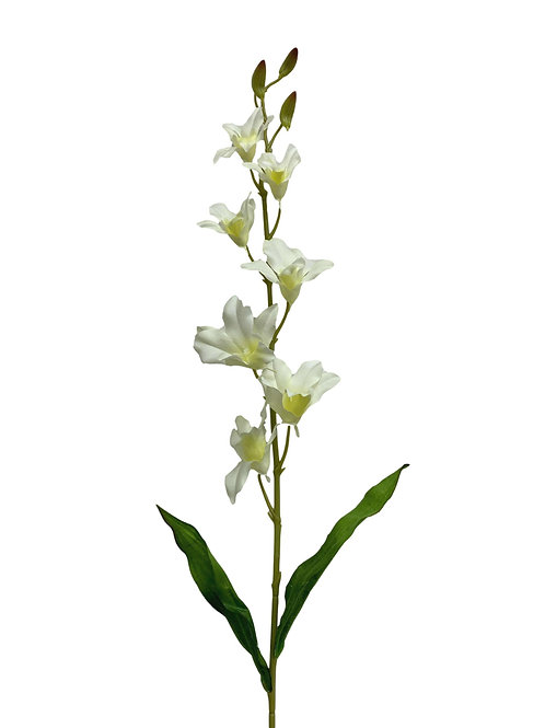 "37"" Dendrobium Spray (FO7316)"