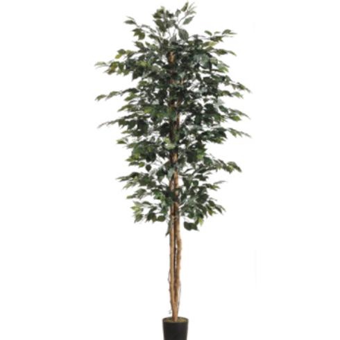 Silk Ficus Tree in pot - 7' Tall