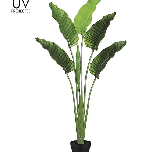 """64"""" UV Protected Plastic Bird of Paradise Plant in pot"""