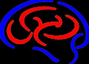 brain-1294993_1280.png