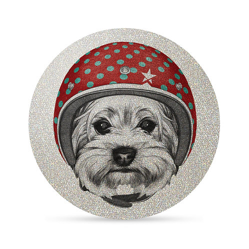FLASH Trendy Dog