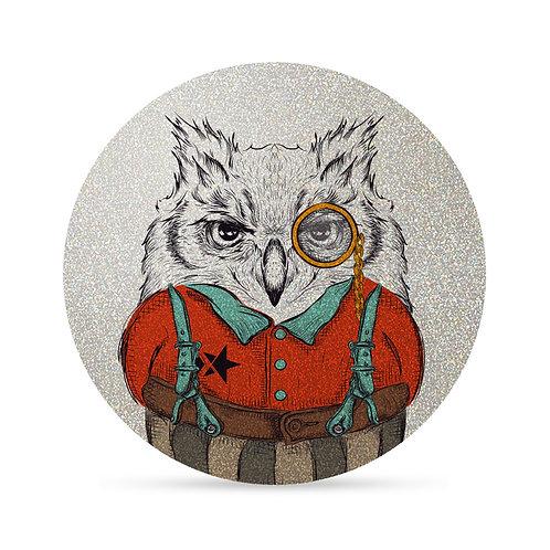 My FLASH *Class Owl