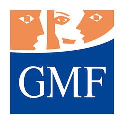 My-FLASH_GMF