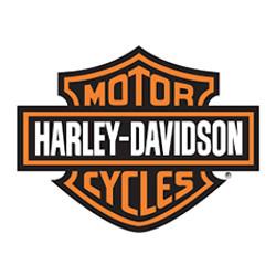 My-FLASH_Harley-Davidson