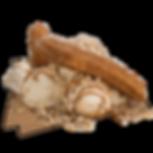 Mar20_DDLA_Flaming_Dog_desktop800.png
