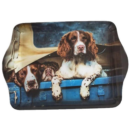 COUNTRY MATTERS Trinket Tray - Spaniels in Landy