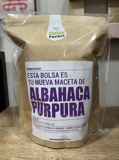 Kit huerto albahaca púrpura