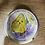 Thumbnail: Mezcla de semillas de flores atrae mariposas
