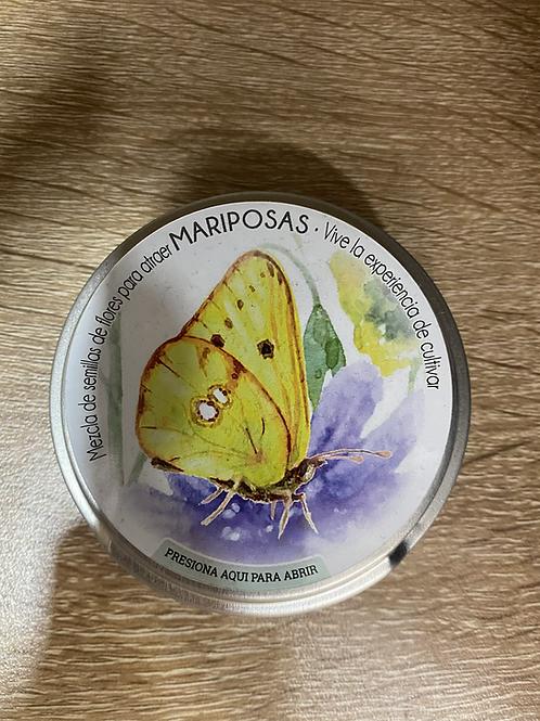Mezcla de semillas de flores atrae mariposas