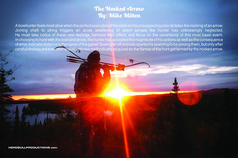 """The Nocked Arrow"" Poster"