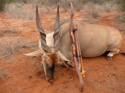 my eland bow