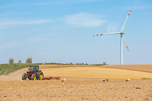 The windmills and the tractor working on