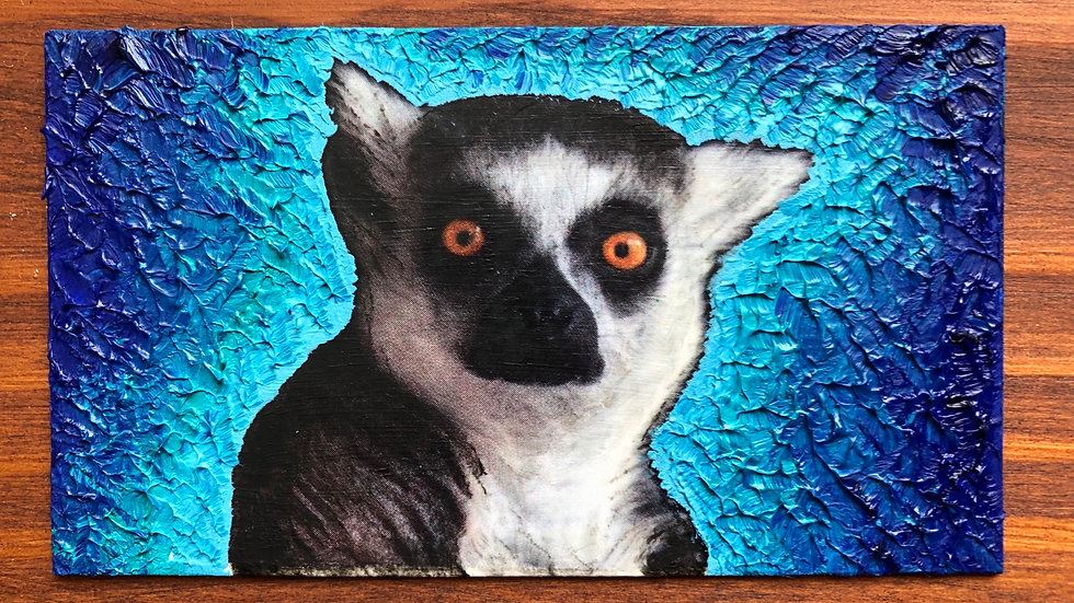 Lovable Lemur