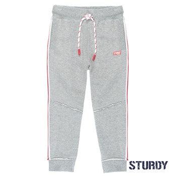 Pantalon gris Sturdy