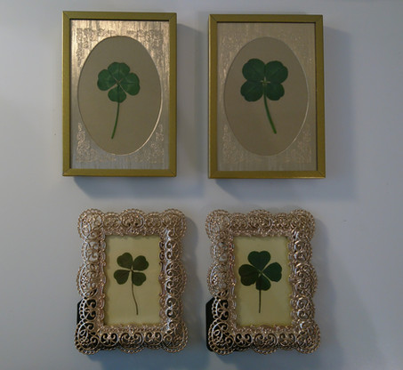 New four-leaf clovers in our collection
