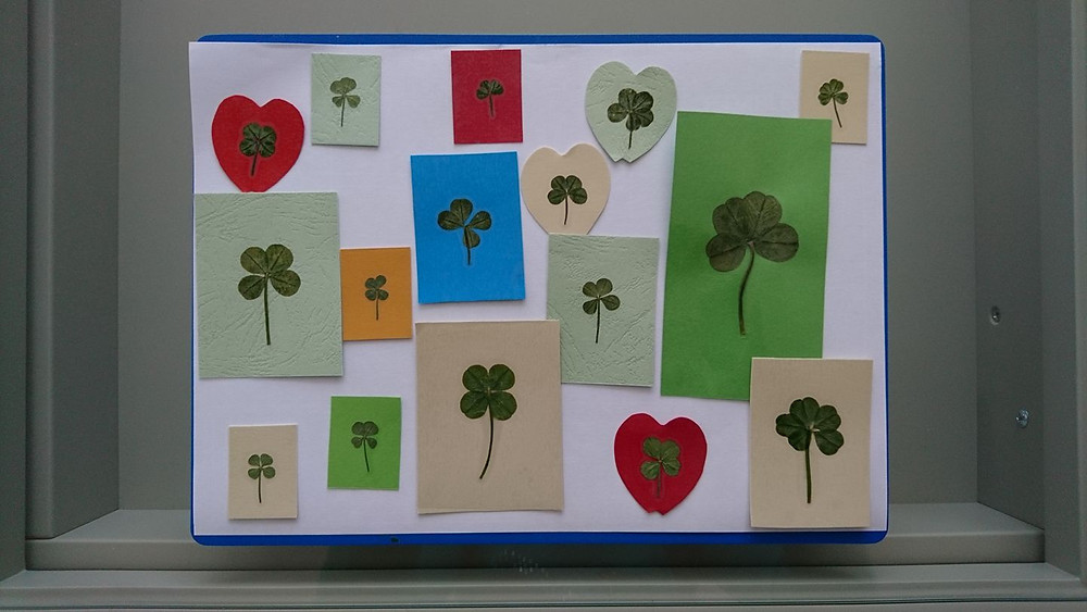 4 and 5 leaf clovers