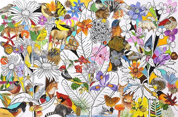 Wildflowers & Wildlife, 2021