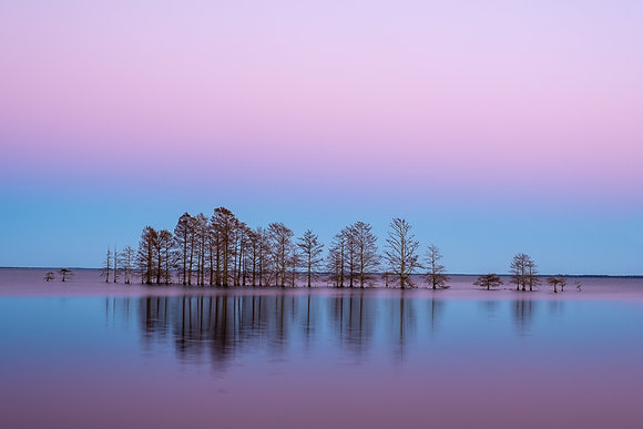 Lake Mattamuskeet at dusk, 2019