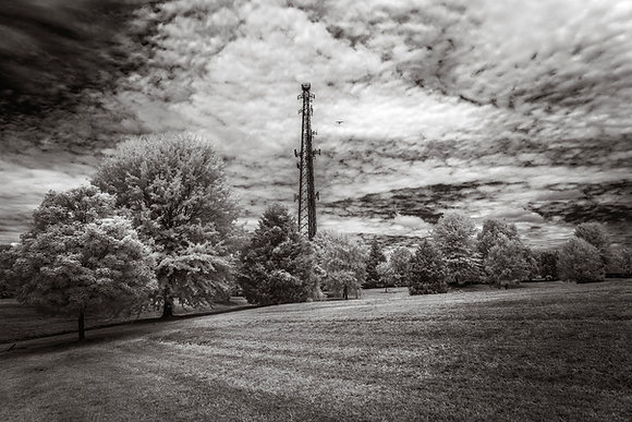 Oak Summit Park, 2018