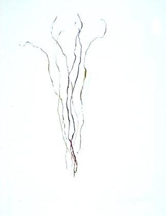 """""""Twig dance No. 5"""", 2004"""