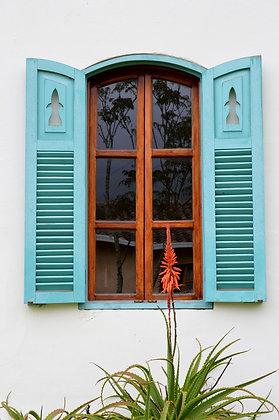 Ecuador Window, 2019