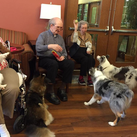Nursing-Home-Visits.jpg