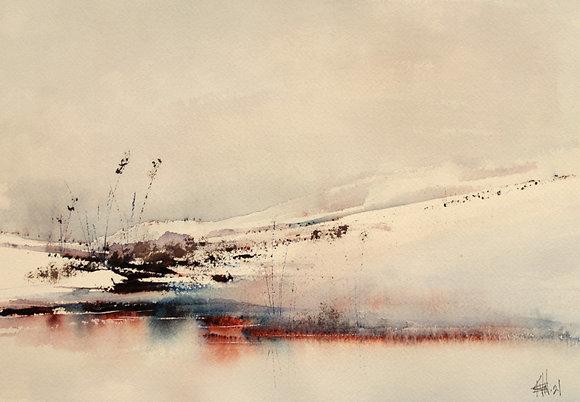 Intercoastal Snow, 2021