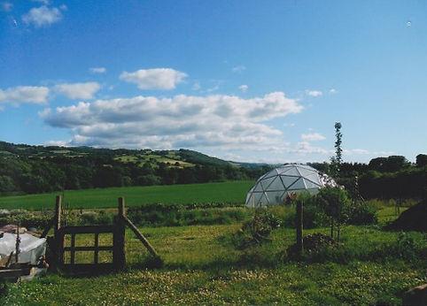 Hayfield Community Garden Hay