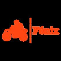 Fénix_orange (1).png