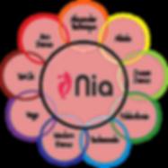 Nia-Logo_new4.png