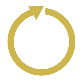 LEAD360 Arrow - Gold-01.png