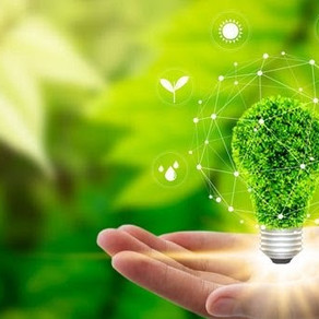 The Importance of Sustainability