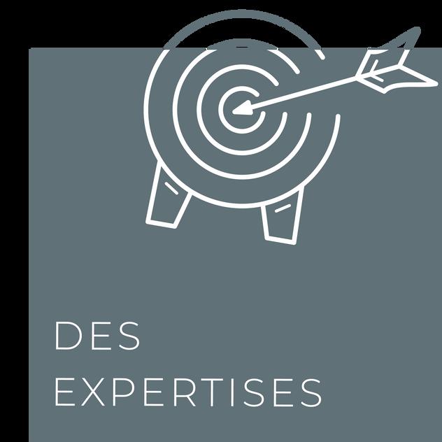 Rubriques_expertises_Site_TOP500.png