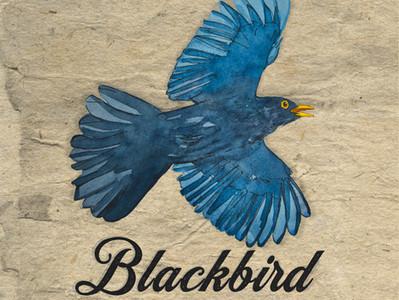 Pre-save my New Single 'Blackbird' now!