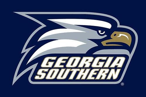 """Georgia Southern 12"""" x 18"""""""