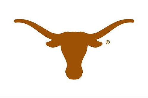 TEXAS LONGHORN WHITE 2'X 3'