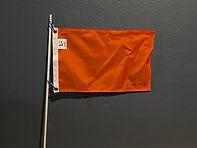 SKIER DOWN FLAG.jpeg