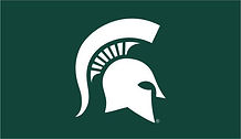 MICHIGAN STATE SPARTY GREEN APP.jpg