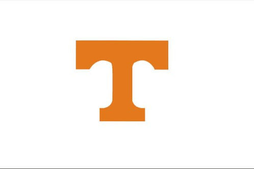 TENNESSEE WHITE 2'X 3'