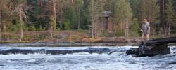 Drogsjöforsen - Gimån - Albacken