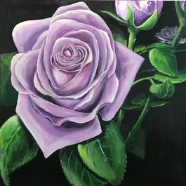 Purple Rose (2020)