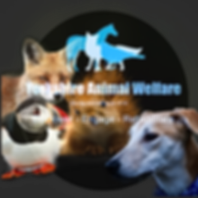 Logo with animals 04/2020.png
