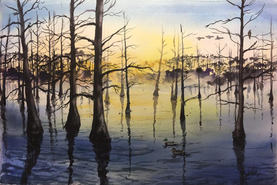 Morning Bayou
