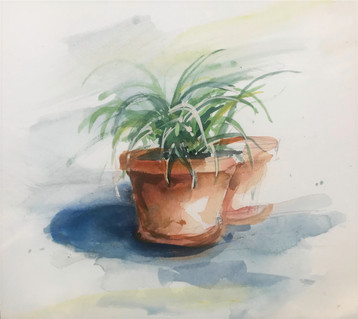 Potted Plant (2019)