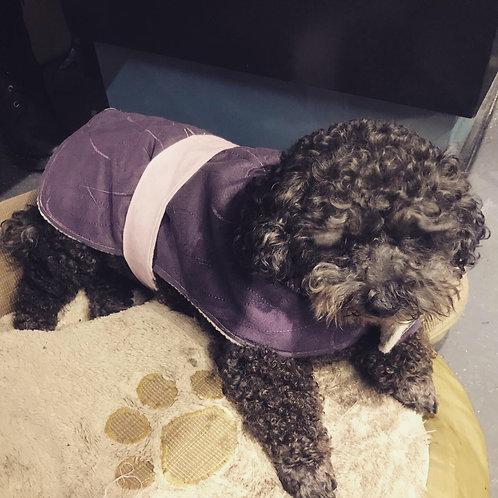 Stay warm purple velvet fleece coat