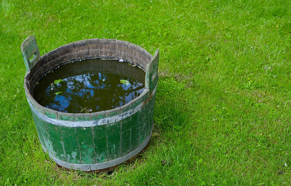 Stagnant water in a barrel
