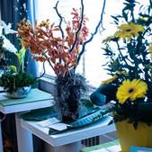 DGC Flower Show 18 (5 of 18).jpeg