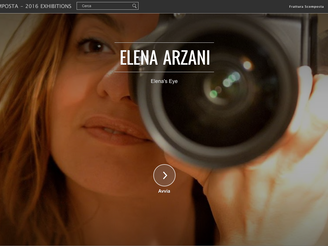 Elena Arzani artworks on Google Cultural Institute